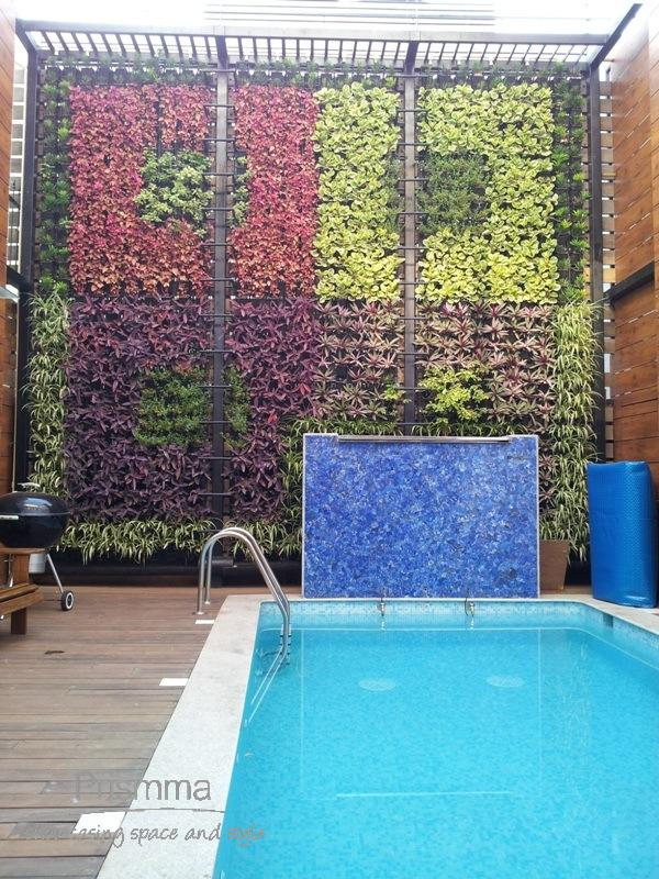india vertical garden patiobangalore