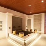 India Spa-Jiva Grande-Vivanta By Taj-Bekal-Kerala